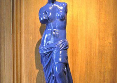 Venus-11 copie